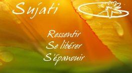 forfait_orange_fr