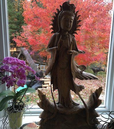 Couleur d'automne - Fall colors